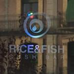 RICE&FISH_Jaca_Instalacion09