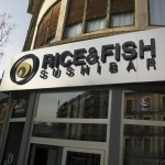 RICE&FISH_Jaca_Instalacion10